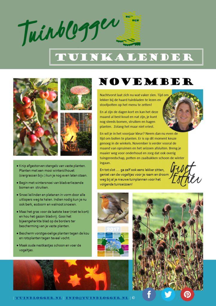 Tuinkalender november