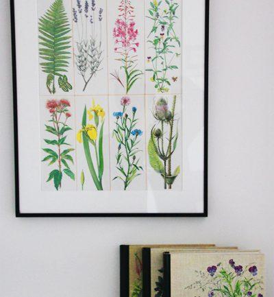 Botanische prints zijn prachtig!