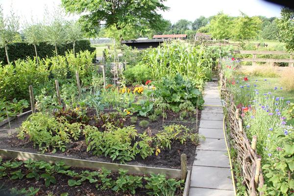 moestuin-tuinblogger-tuinblog