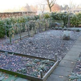 moestuin-winter-tuinblog
