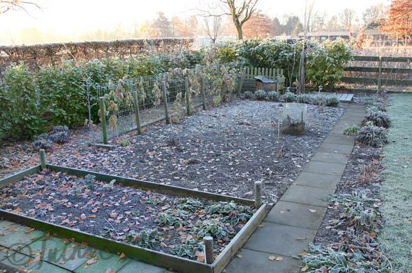 moestuin-winter-tuinblog