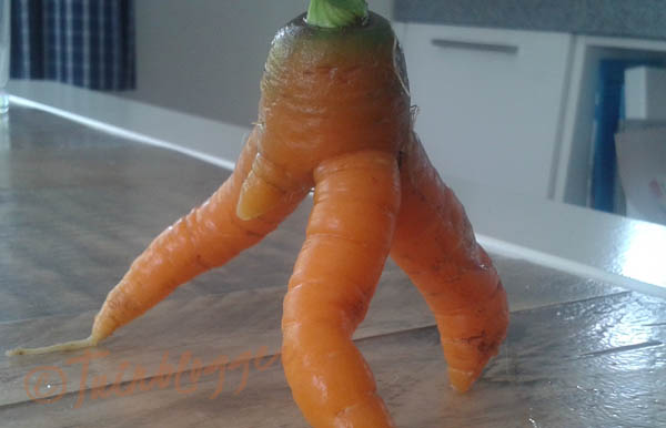 rare-wortel