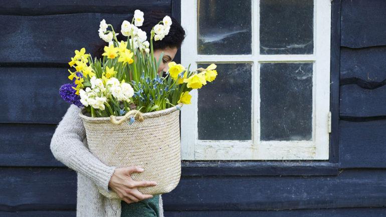 Herplant al die uitgebloeide voorjaarsbollen!