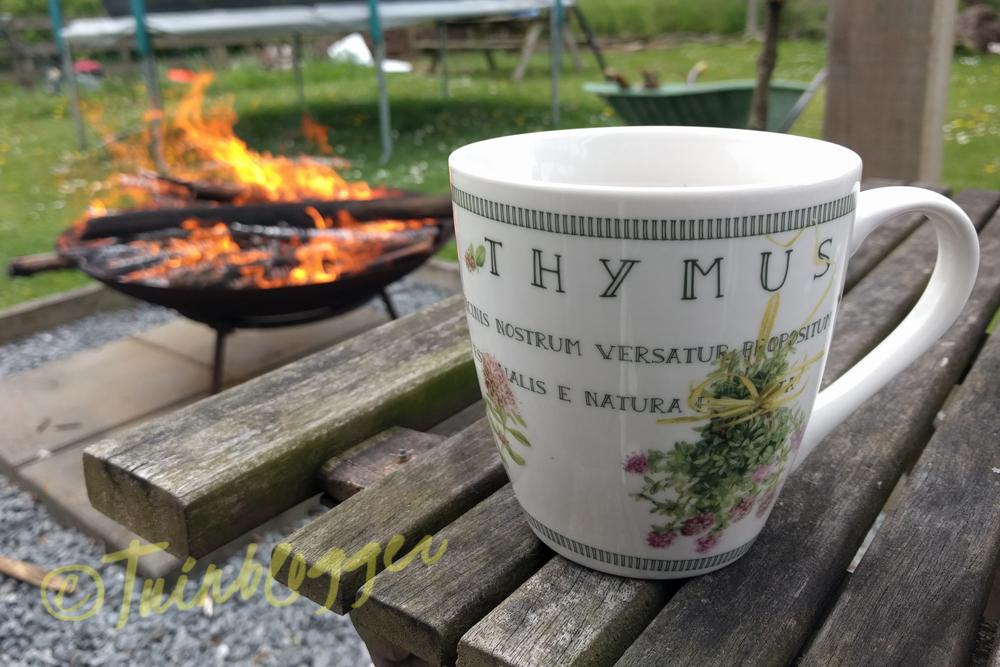 Vuurtje-as-op-tuin-tuinblog