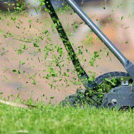 grasmaaier-grasmaaisel