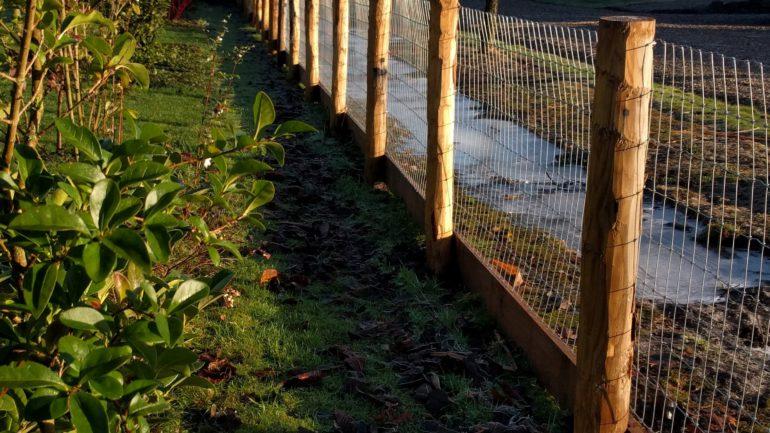 Tijd voor een nieuw hek!
