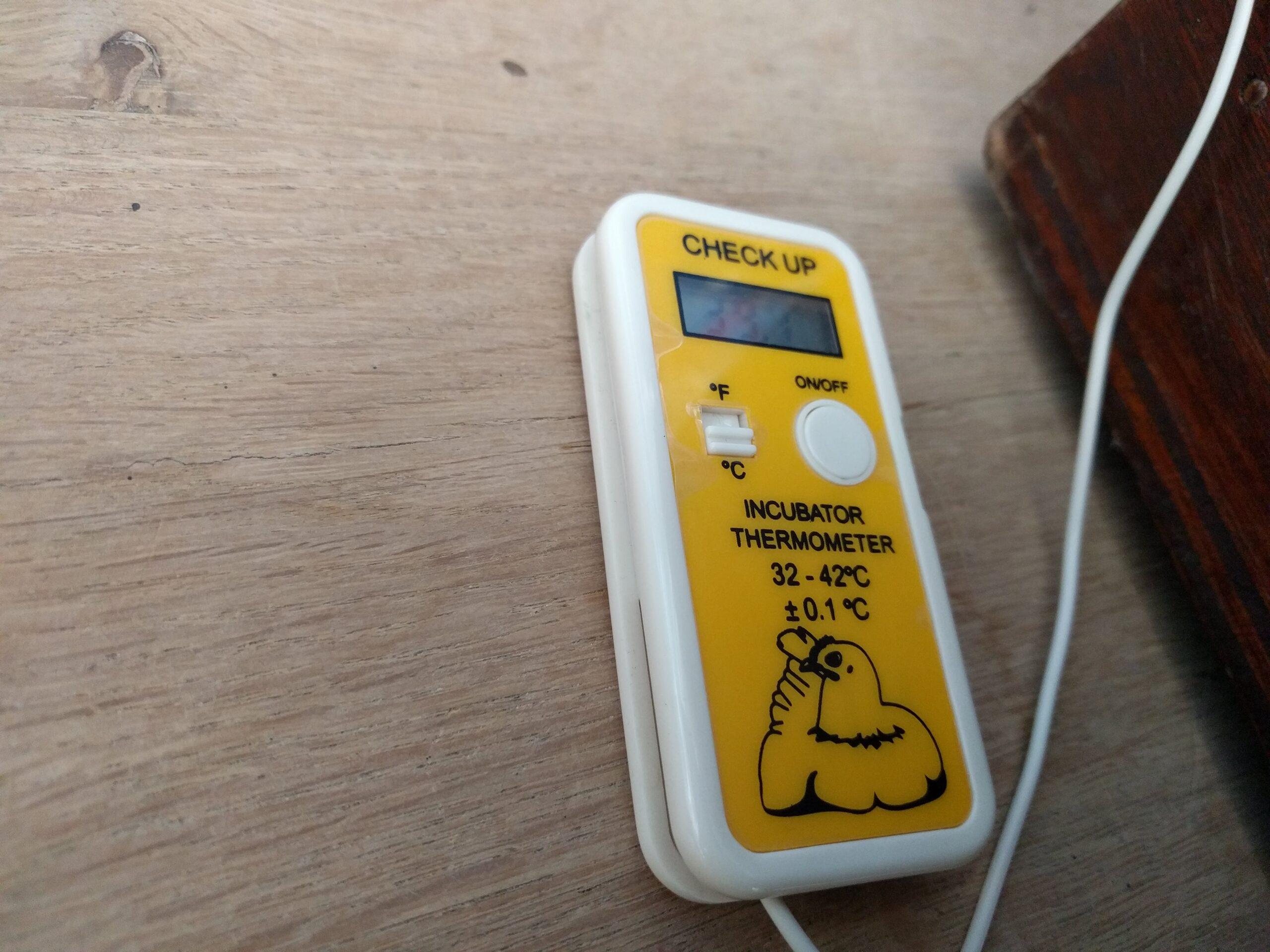 temperatuur-broedmachine-kippen-kuikenblogine