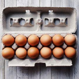 eieren-doosje-tuinblog-kuikenblog