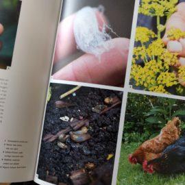 Plaagdieren-pagina-review-kippen