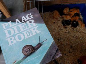 review-boek-plaagdieren-kippen