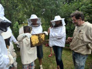 imker-bijen-open-dag