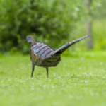 beeld-metaal-fazant-tuinblogger-kunst-afrika-mooie-dieren