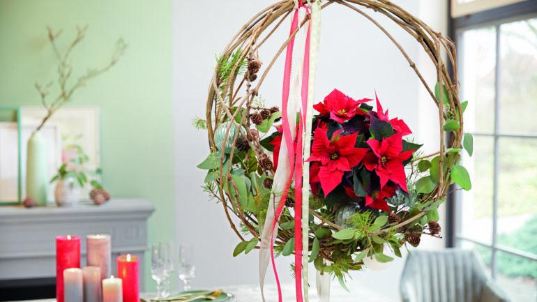 Poinsettia-kerstster-krans-tuinblogger
