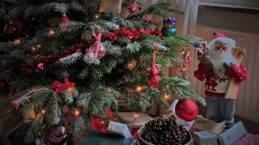 Dit helpt om je kerstboom mooi te houden!