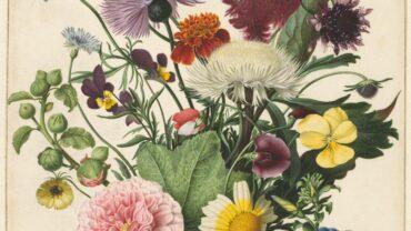 Fleur je huis op met  fotobehang vol bloemen