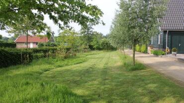 4 x een groene grasmat